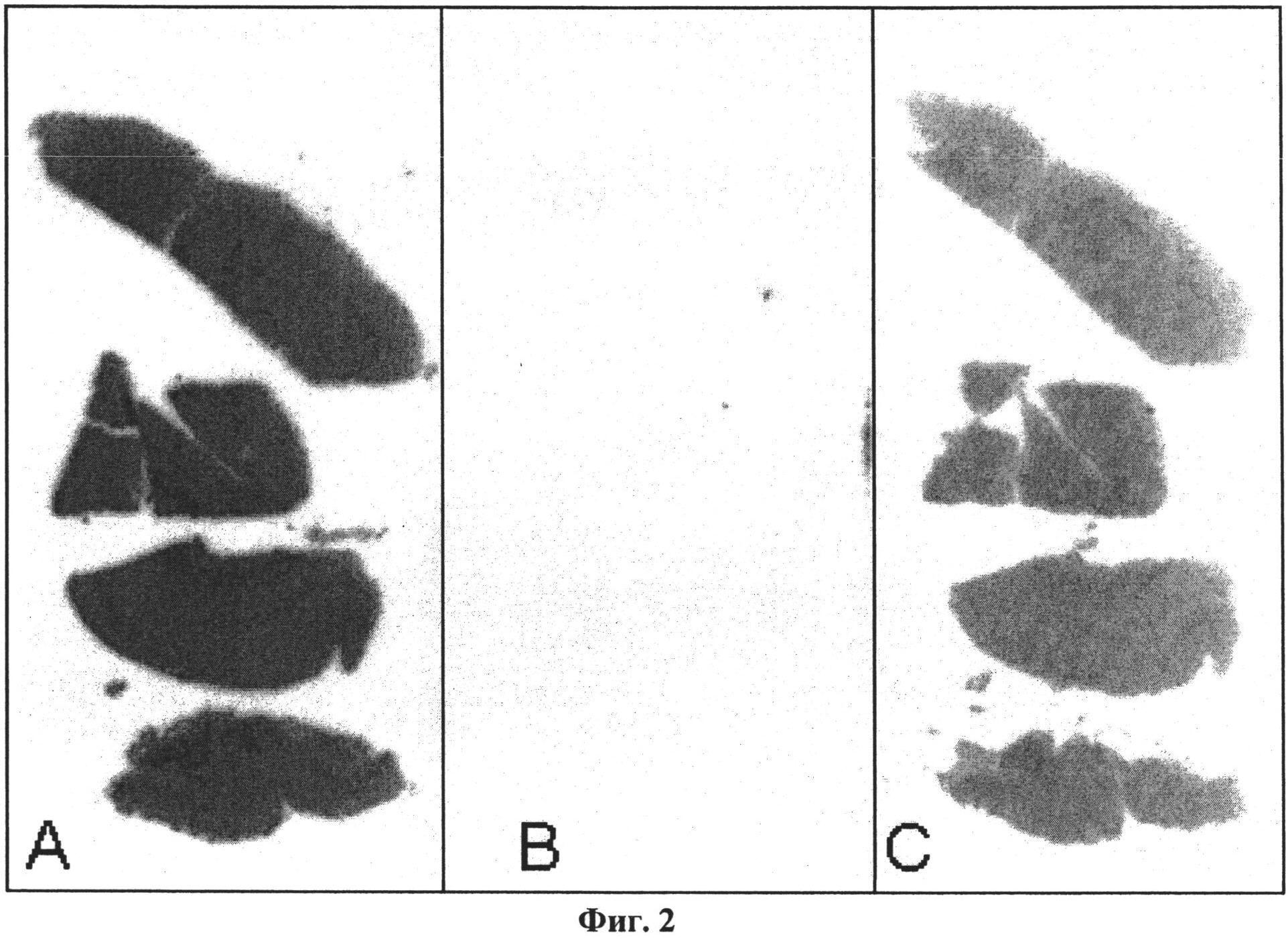 Соединения для применения в визуализации, диагностике и/или лечении заболеваний центральной нервной системы или опухолей