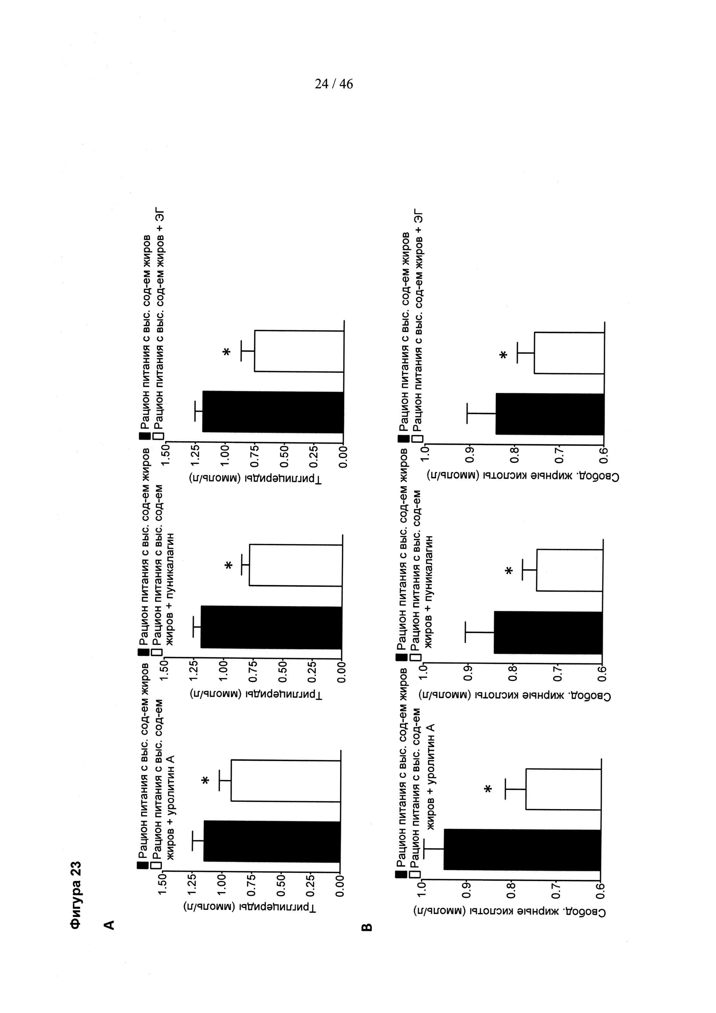 Найдены гены, контролирующие отложение жировых капель в адипоцитах