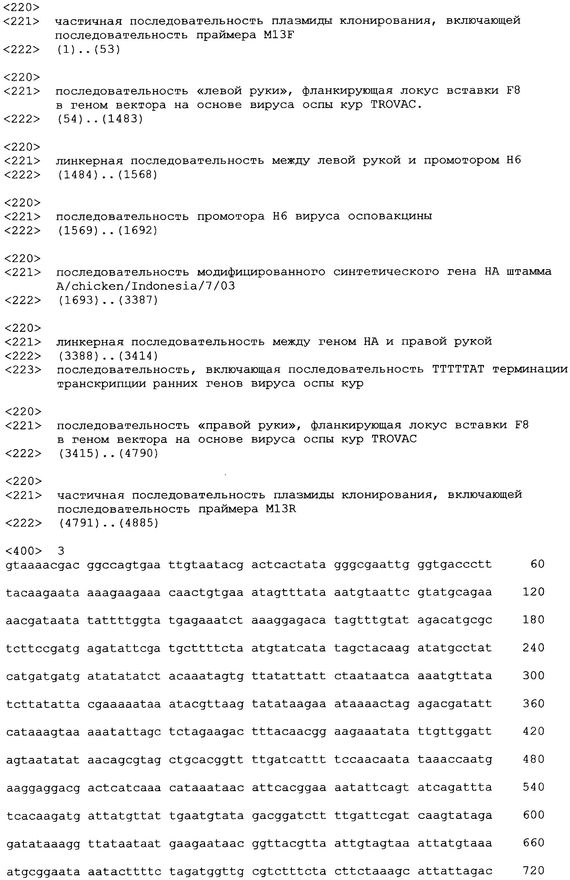 Фрагментация хромосом при б. ньюкасла