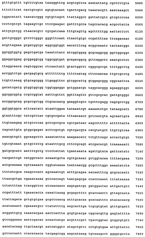 Поливалентные иммуногенные композиции pcv2 и способы получения таких композиций