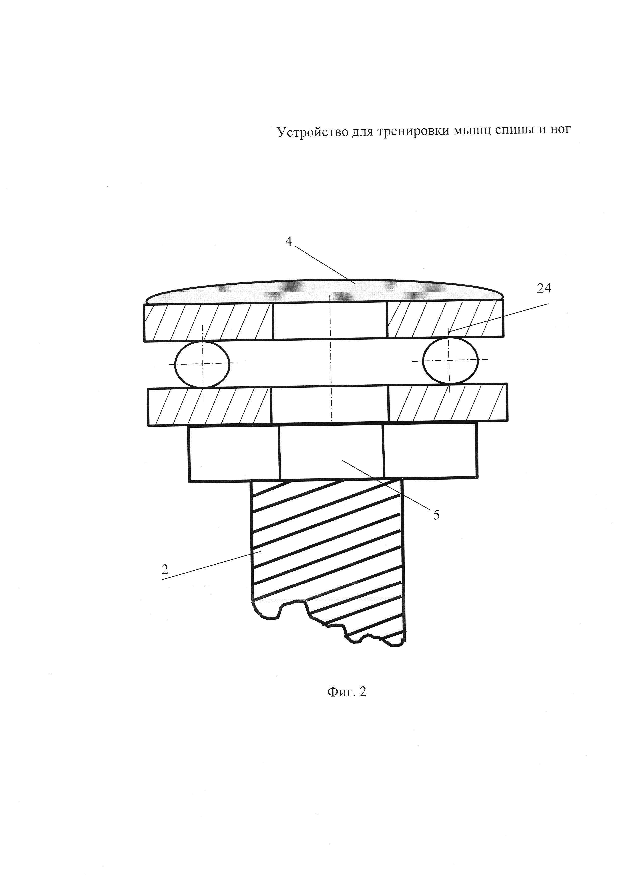 Тренировочное устройство для мышц спины и ног