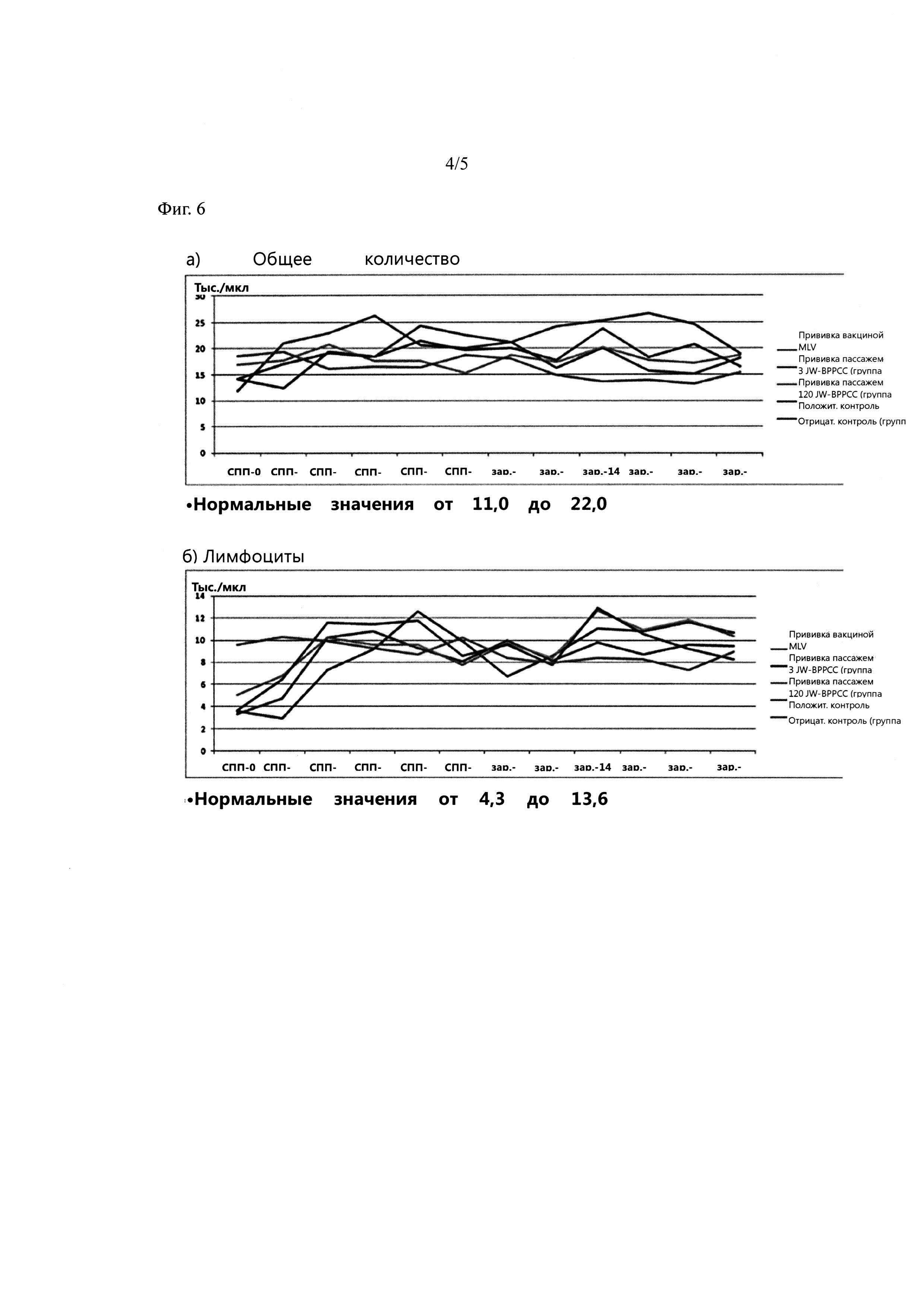 Новый вирус репродуктивно-респираторного синдрома свиней (вррсс) корейского типа