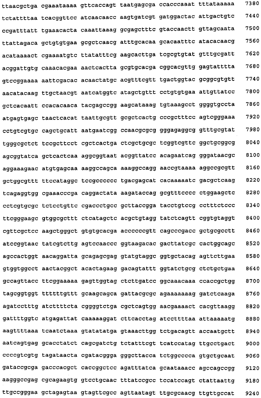 Иммуногенные композиции pcv2 и способы получения таких композиций