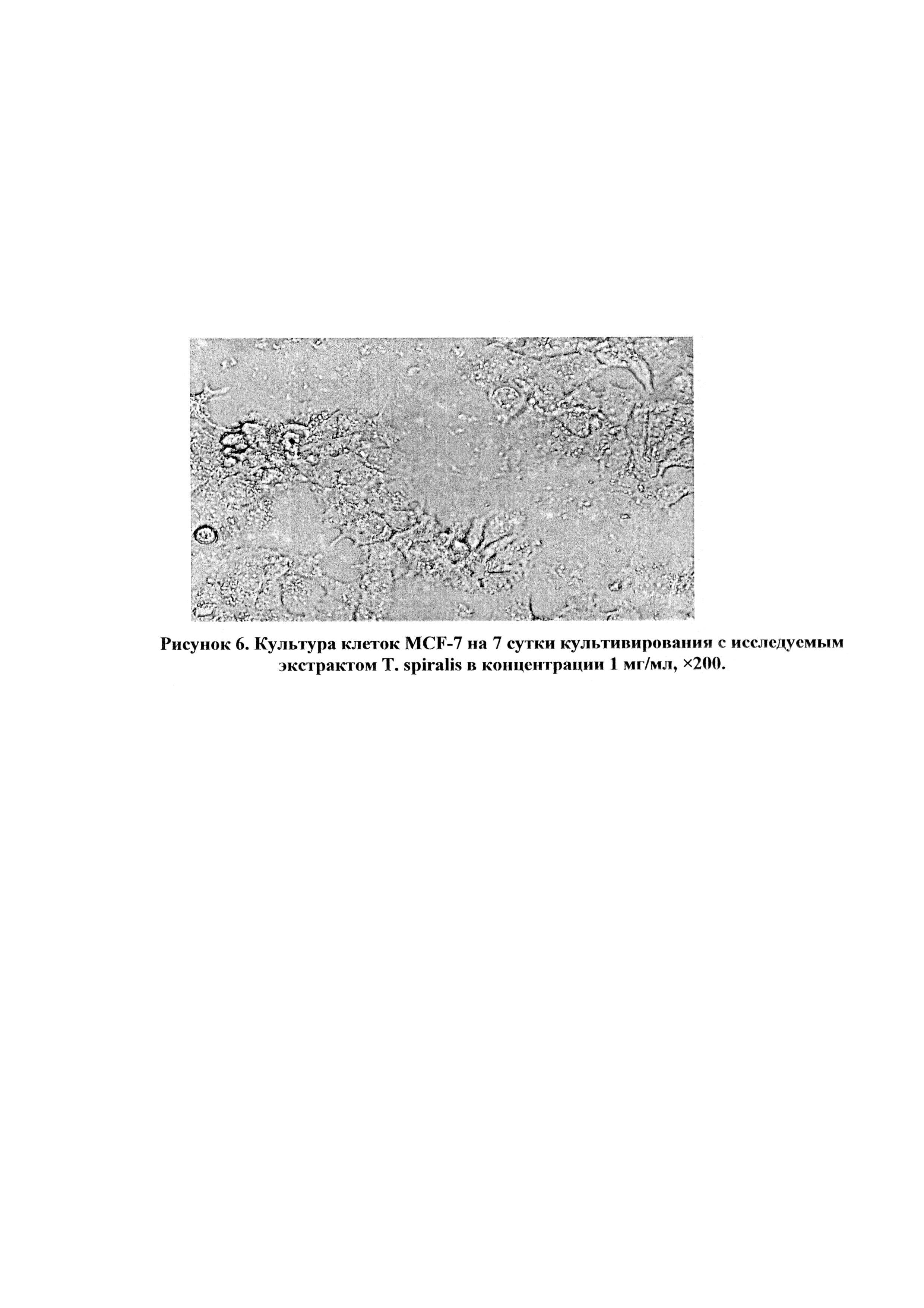 Применение белкового экстракта в качестве антипролиферативного и цитотоксического средства