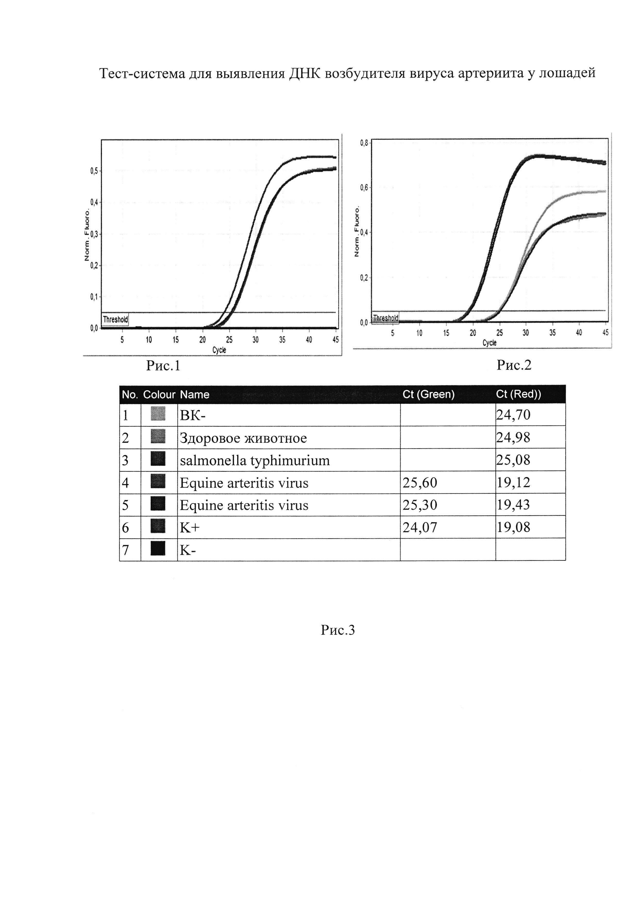 Тест-система для выявления РНК возбудителя вируса артериита у лошадей