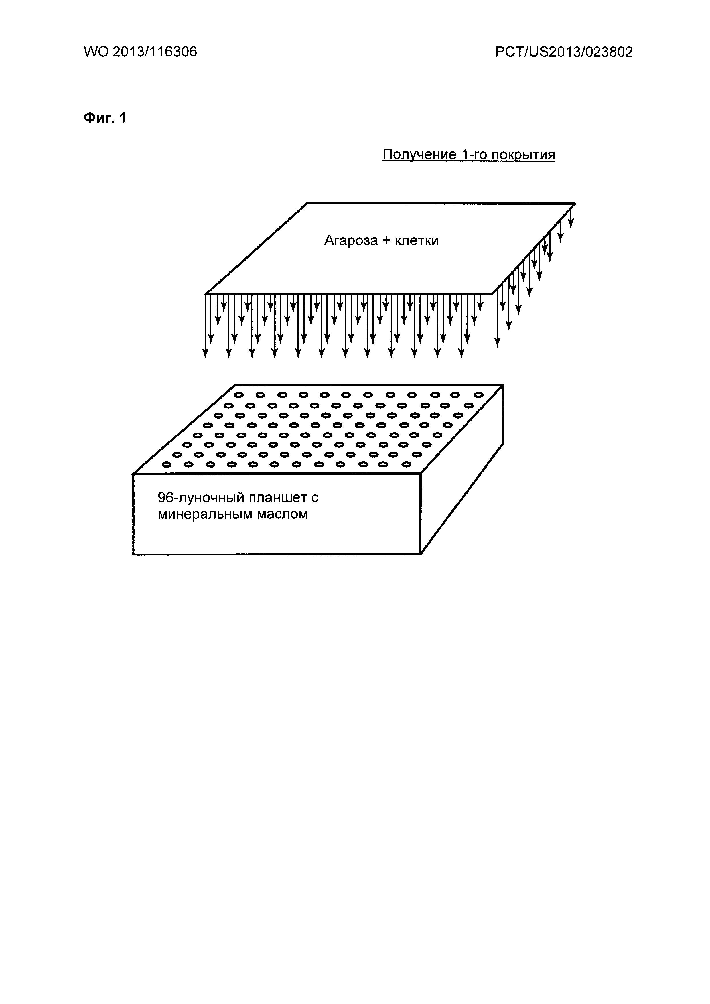 Усовершенствованный способ получения макрогранул